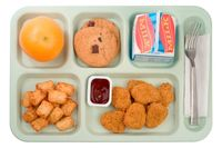 Lunch_tray