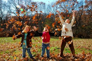 Kids throwing leaves by nick see on flickr